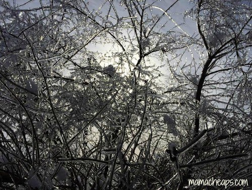 The February Ice Storm - Our Real Live Version of Disney's ...