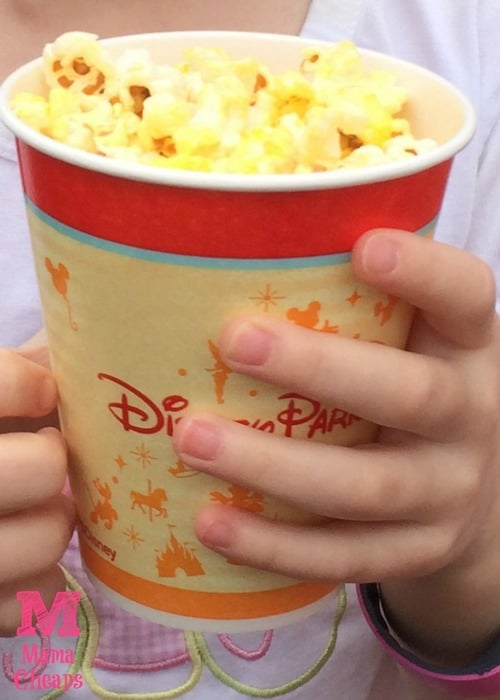 magic kingdom fresh popcorn