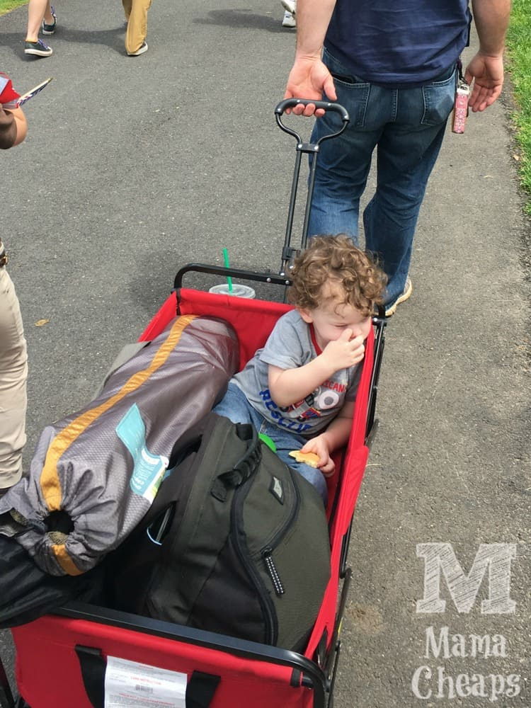 MAC Collapsible Wagon RED