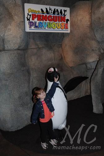 ripleys aquarium of the smokies m
