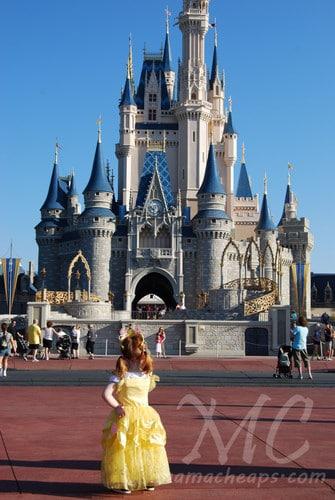 Magic Kingdom castle belle 2