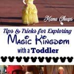 Tips for Taking a Toddler to Disney Magic Kingdom