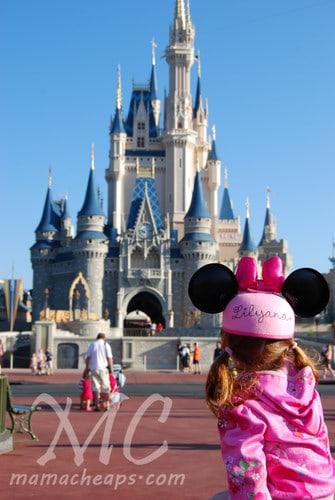 lily magic kingdom castle