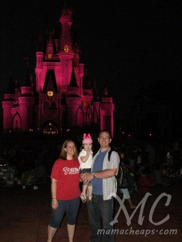 magic kingdom castle night