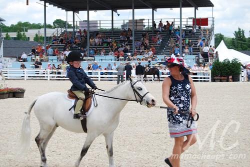 devon horse show 2011 f
