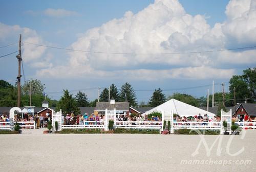 devon horse show 2011 g