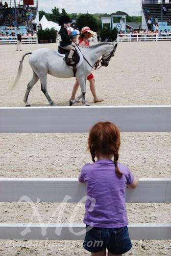 devon horse show 2011 h