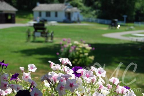 the amish village lancaster d