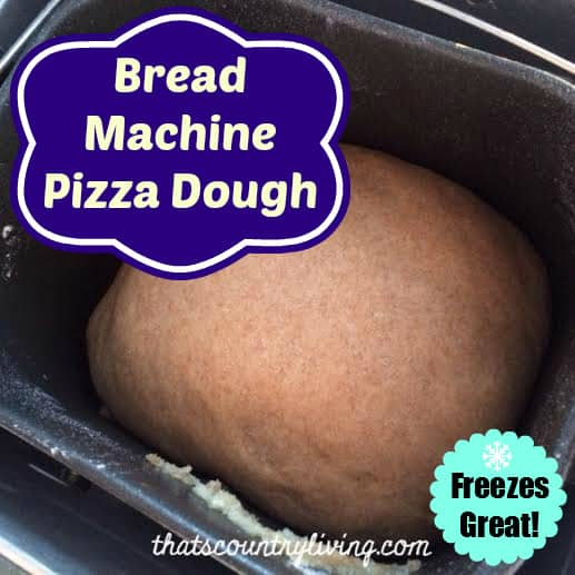 bread machine pizza dough title