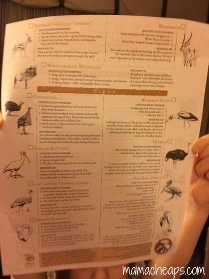 disney world animal kingdom lodge kidani village deluxe studio villa wildlife chart b