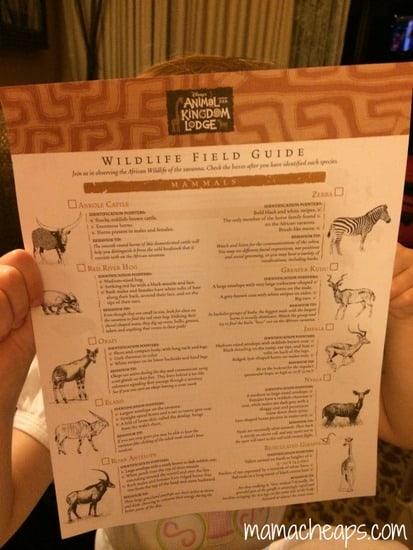 disney world animal kingdom lodge kidani village deluxe studio villa wildlife chart