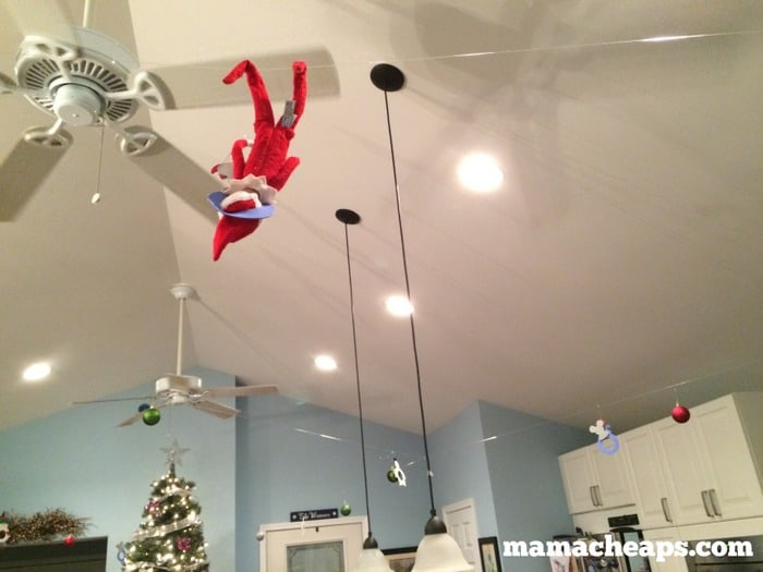 Elf Decorates Kitchen