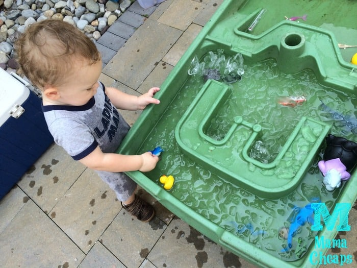 water table landon
