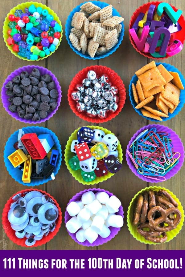 111 Things for the 100th Day of School! PIN 1