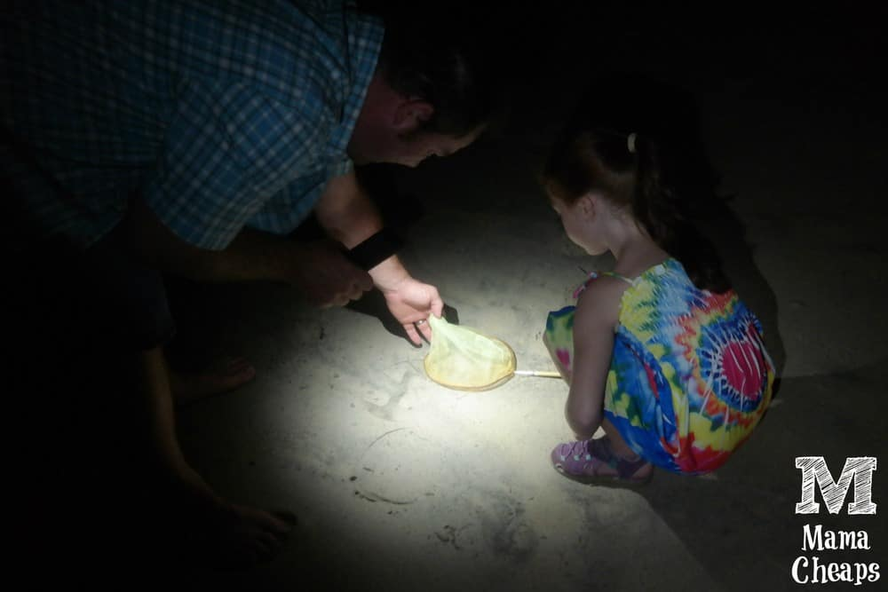 Ghost Crabbing Outer Banks