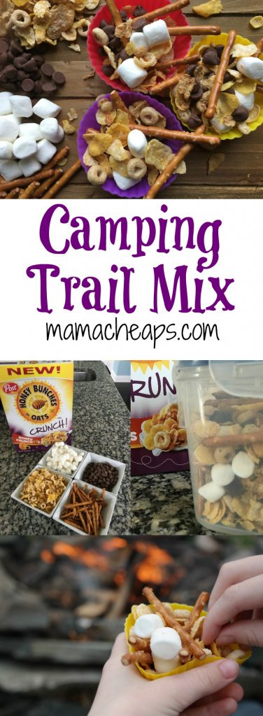 Camping Trail Mix Snack for Kids