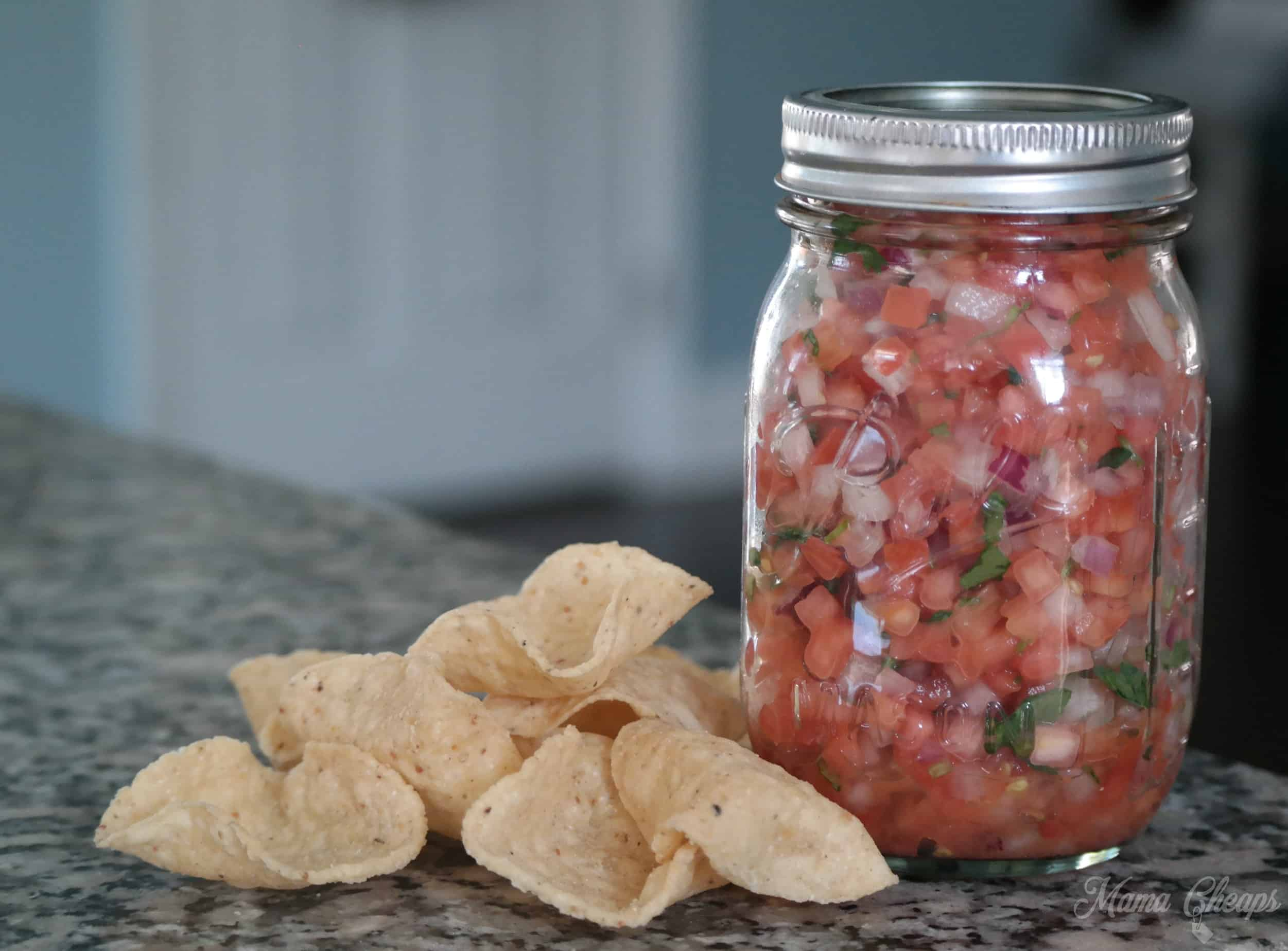 fresh salsa with chips