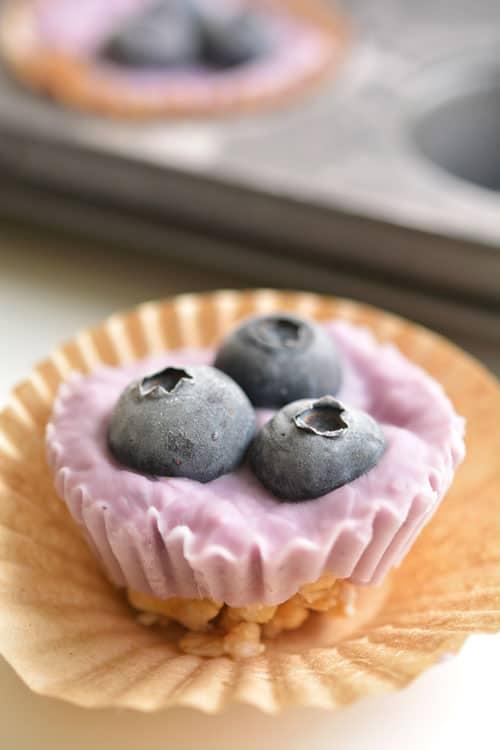 Berry Bites