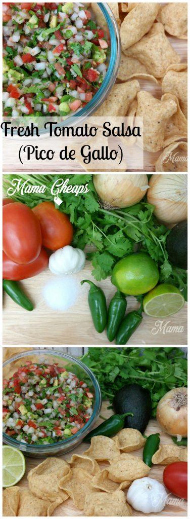 Fresh Summer Tomato Salsa
