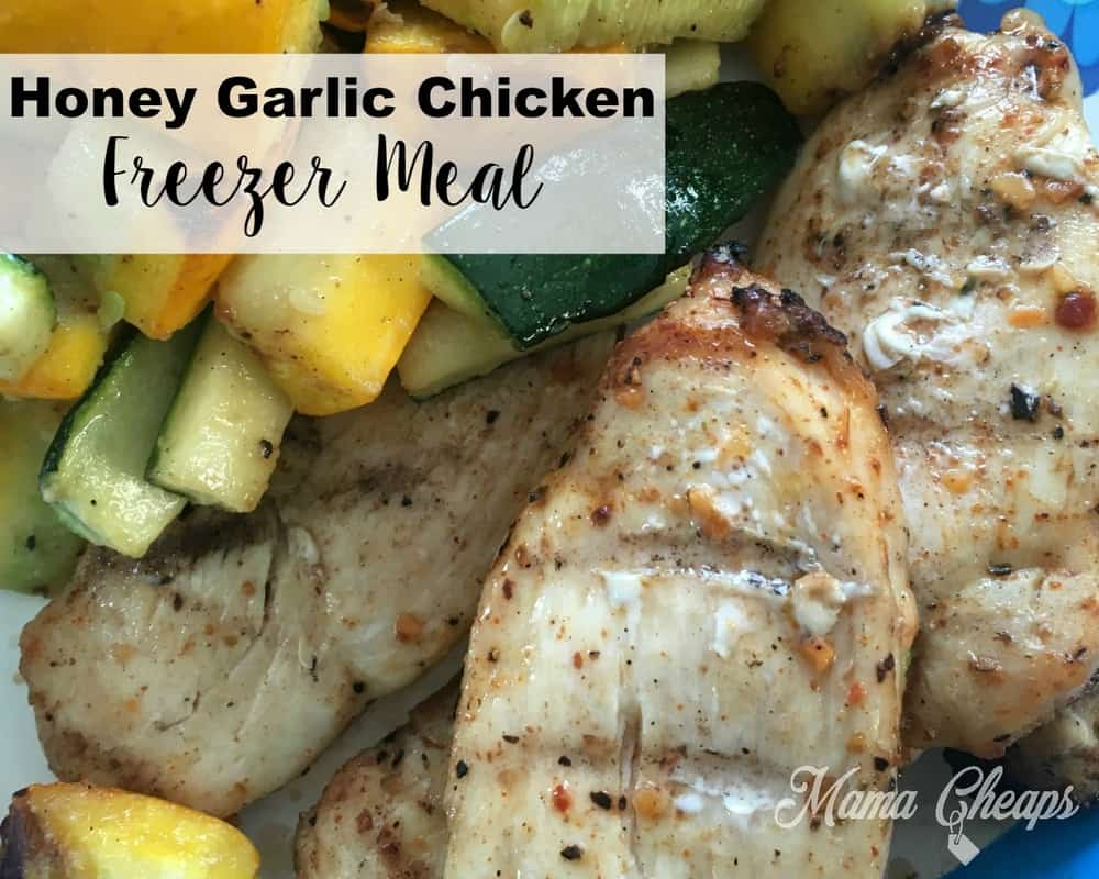 Garlic Honey Chicken Freezer Meal