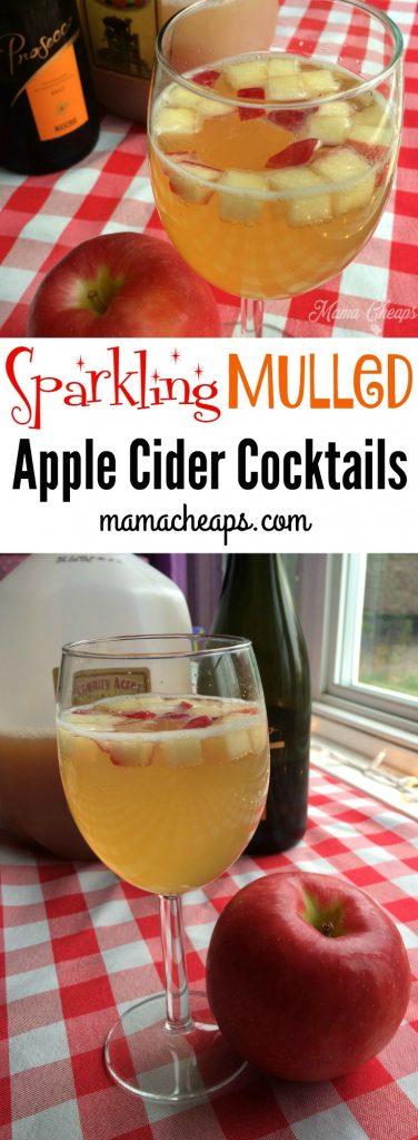 Sparkling Mulled Apple Cider Cocktail Recipe
