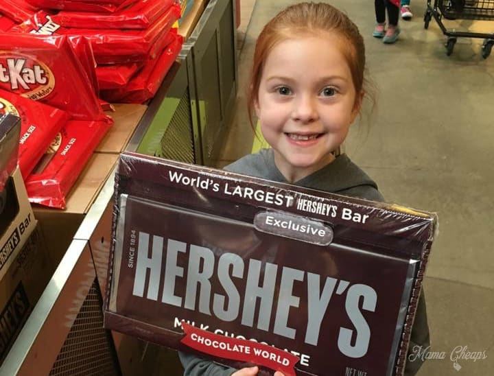 giant-hershey-bar