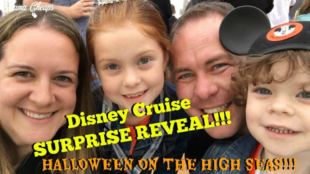 DCL trip reveal