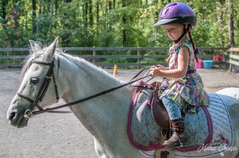 Lily Riding Pony