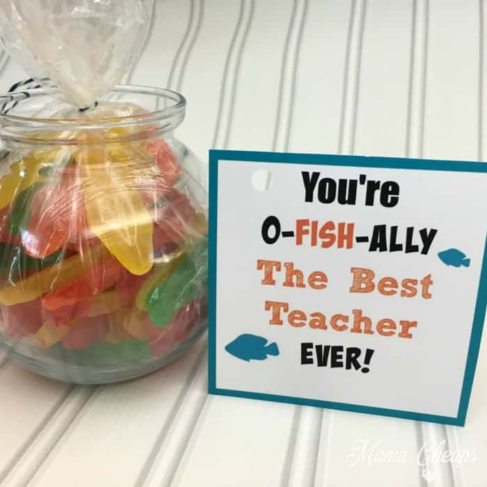O Fish Ally Best Teacher Ever