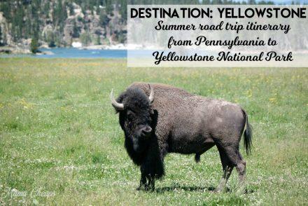 Yellowstone Summer Road Trip Itinerary