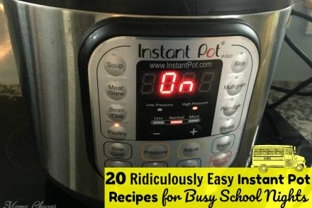 Instant Pot Recipes for School Nights