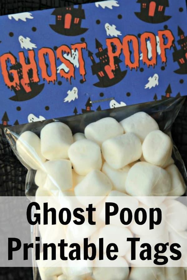 Ghost Poop PIN 2
