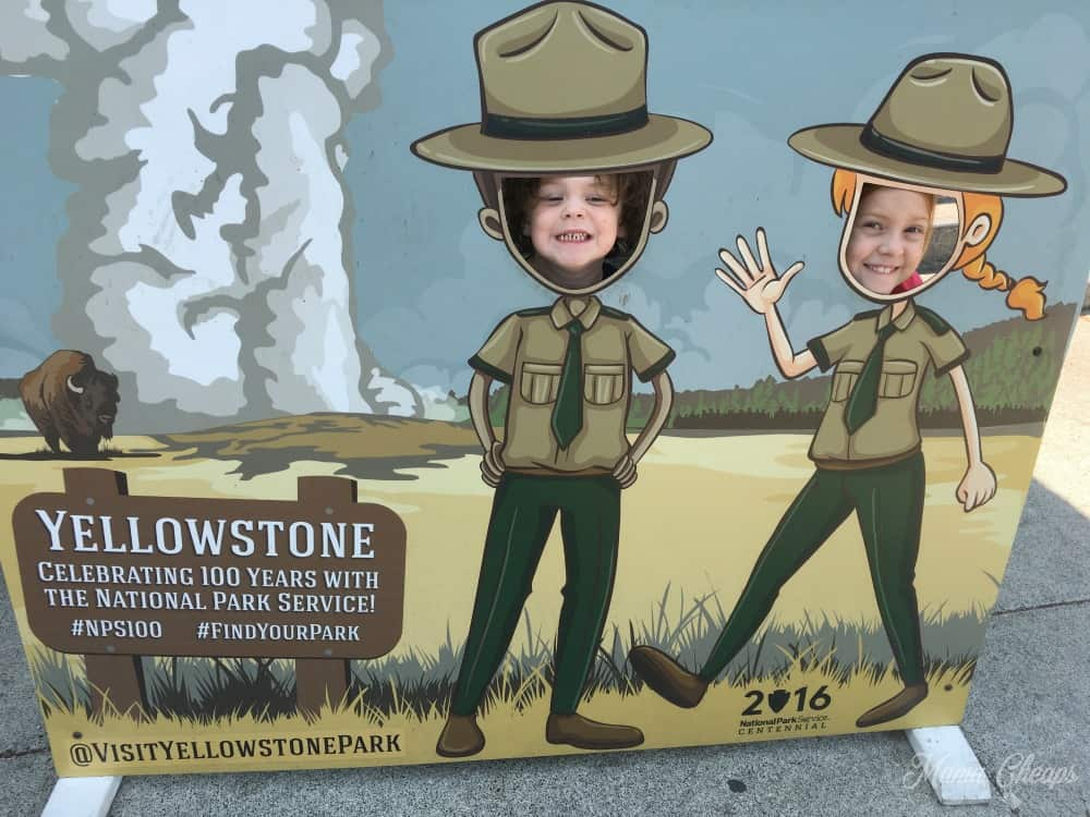 Yellowstone Animal Danger Poster