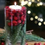 Christmas Pine Cranberry Centerpiece