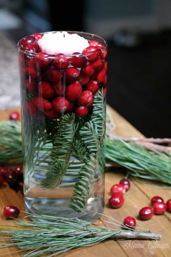 Holiday Cranberry Centerpiece