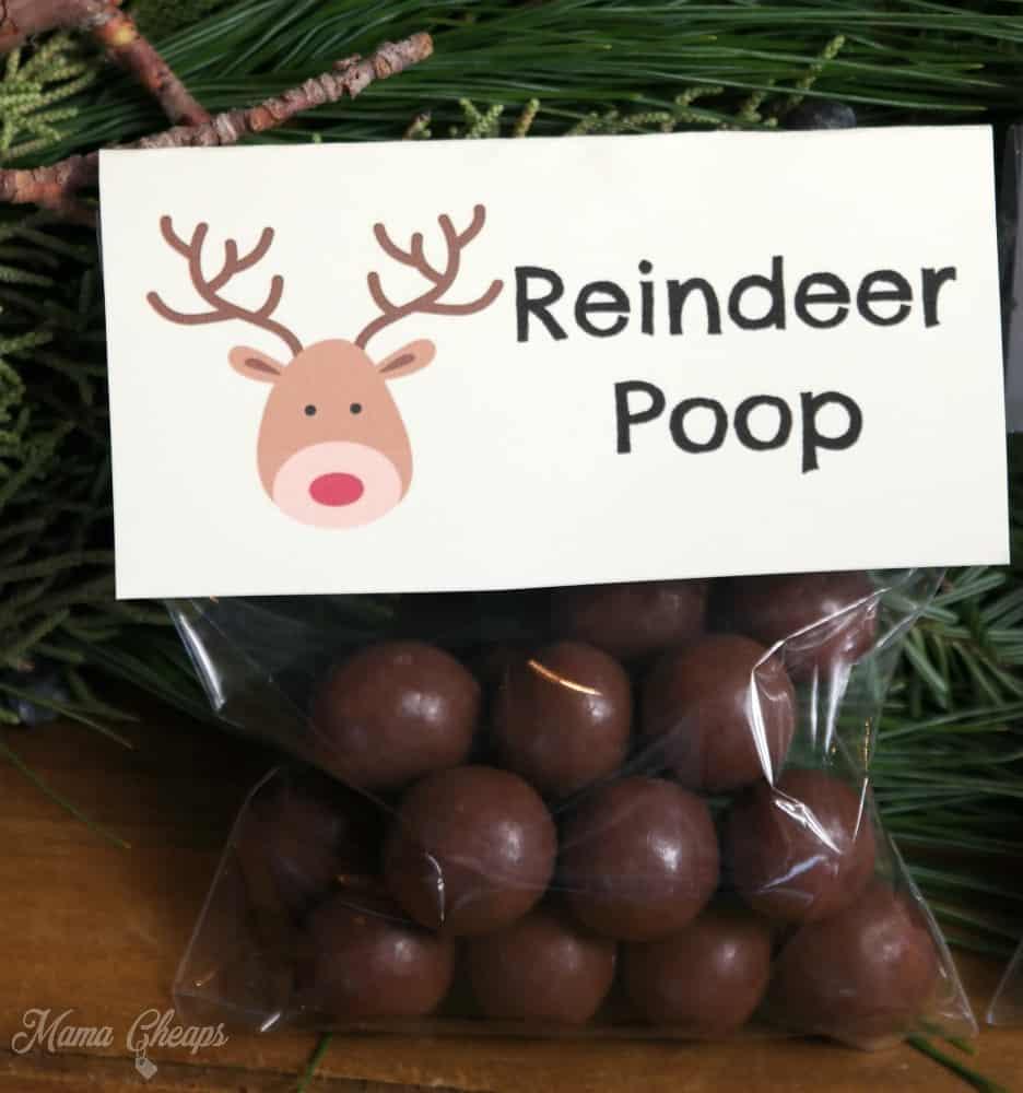 Reindeer Poop