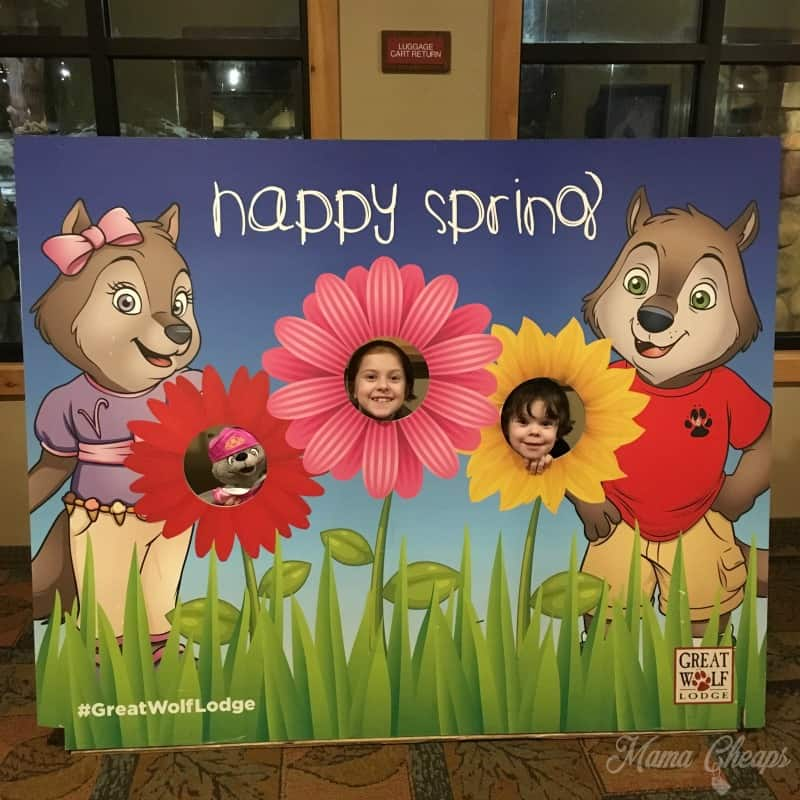 Great Wolf Lodge Spring