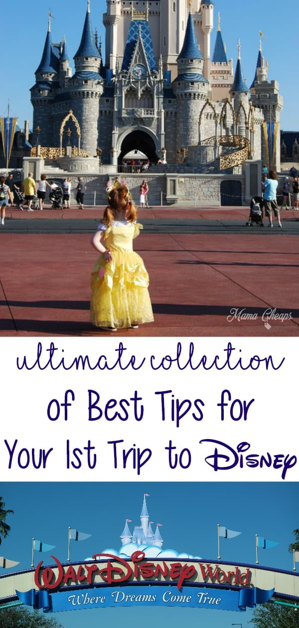 Collection of Best Tips for Your 1st Trip to Disney