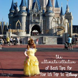 Ultimate Collection of Best Tips for Your 1st Trip to Disney