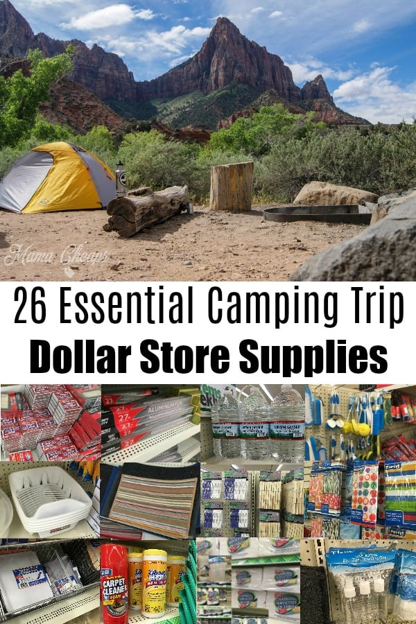 26 Essential Camping Trip Dollar Store Supplies