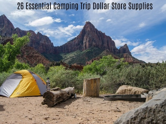 Essential Camping Trip Dollar Store Supplies