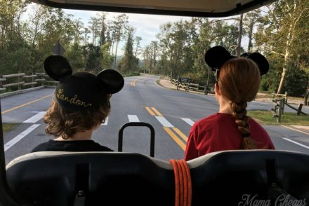 Fort Wilderness Disney Review