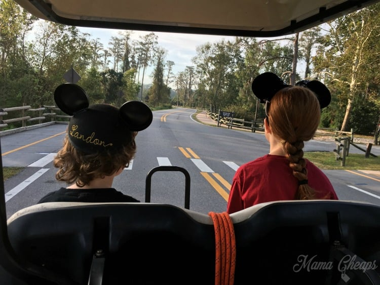 Disney's Fort Wilderness Resort and Campground Review