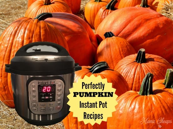 PUMPKIN Instant Pot Recipes
