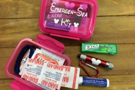 Disney Cruise Emergency Kit