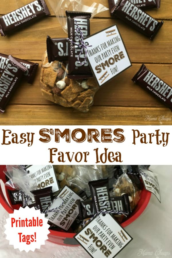 Easy S'mores Party Favor Idea