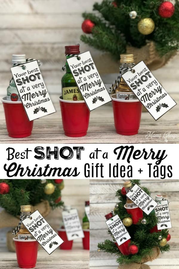 Best Shot at a Merry Christmas Gift Idea
