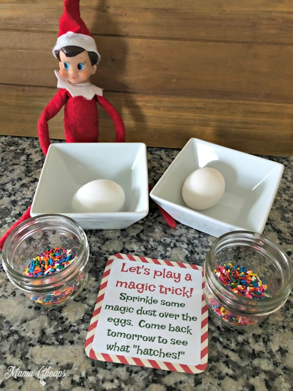 Elf Egg Magic Trick