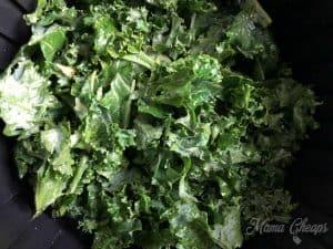 Kale in Air Fryer