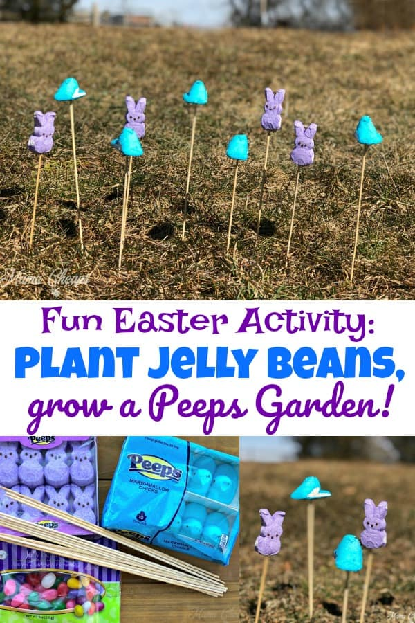 Easter Activity Grow Some Peeps